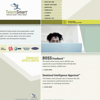TalentSmart Web Site