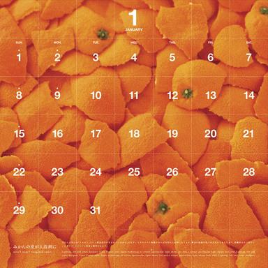 Waste-Me-Not Calendar 2006