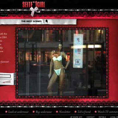 BILD Seite*1Girl - Digital Installation and Website