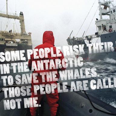 Greenpeace Print Campaign