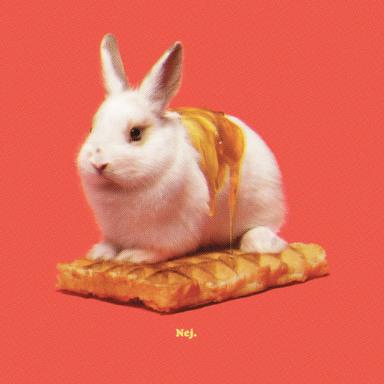 Bunny Waffle