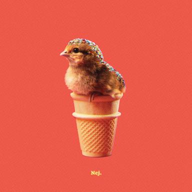 Chick Cone