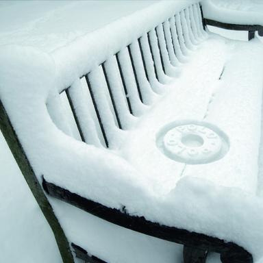 Snow Stamp