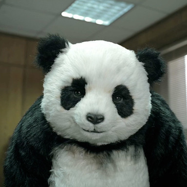 \'\'NEVER SAY NO TO PANDA\'\'