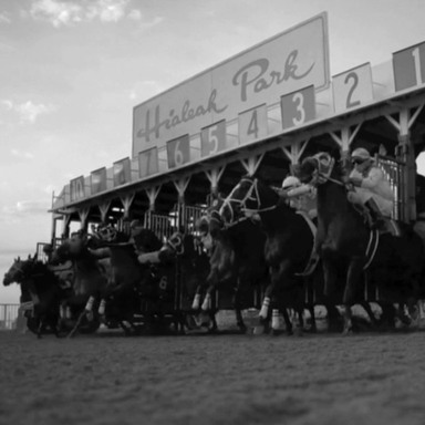 The Horrors Behind Horse Racing