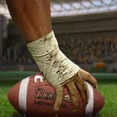 Banner Dove NFL