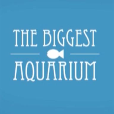 The biggest aquarium