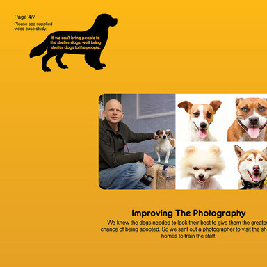 The PEDIGREE® Adoption Drive