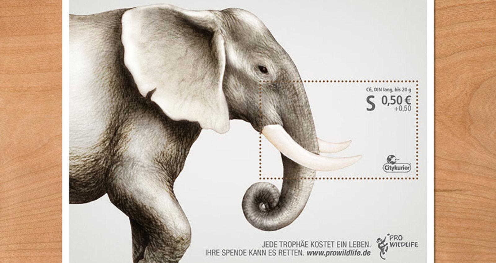 Stamping down on poaching