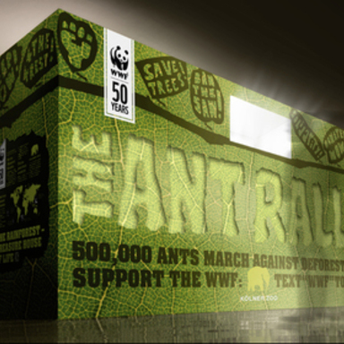 The Ant Rally