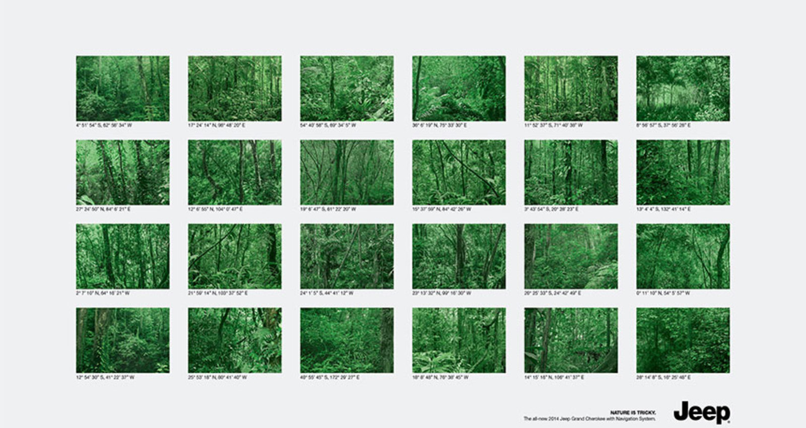Coordinates: Forests