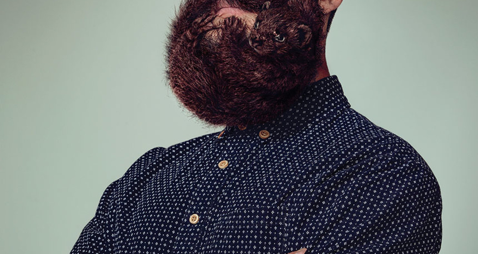 Animal Beards