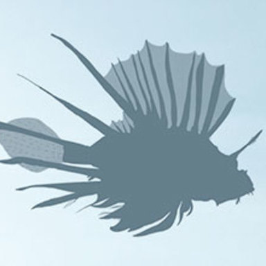 The Lionfish Invasion - Terribly Delicious