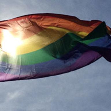 Raise The Pride
