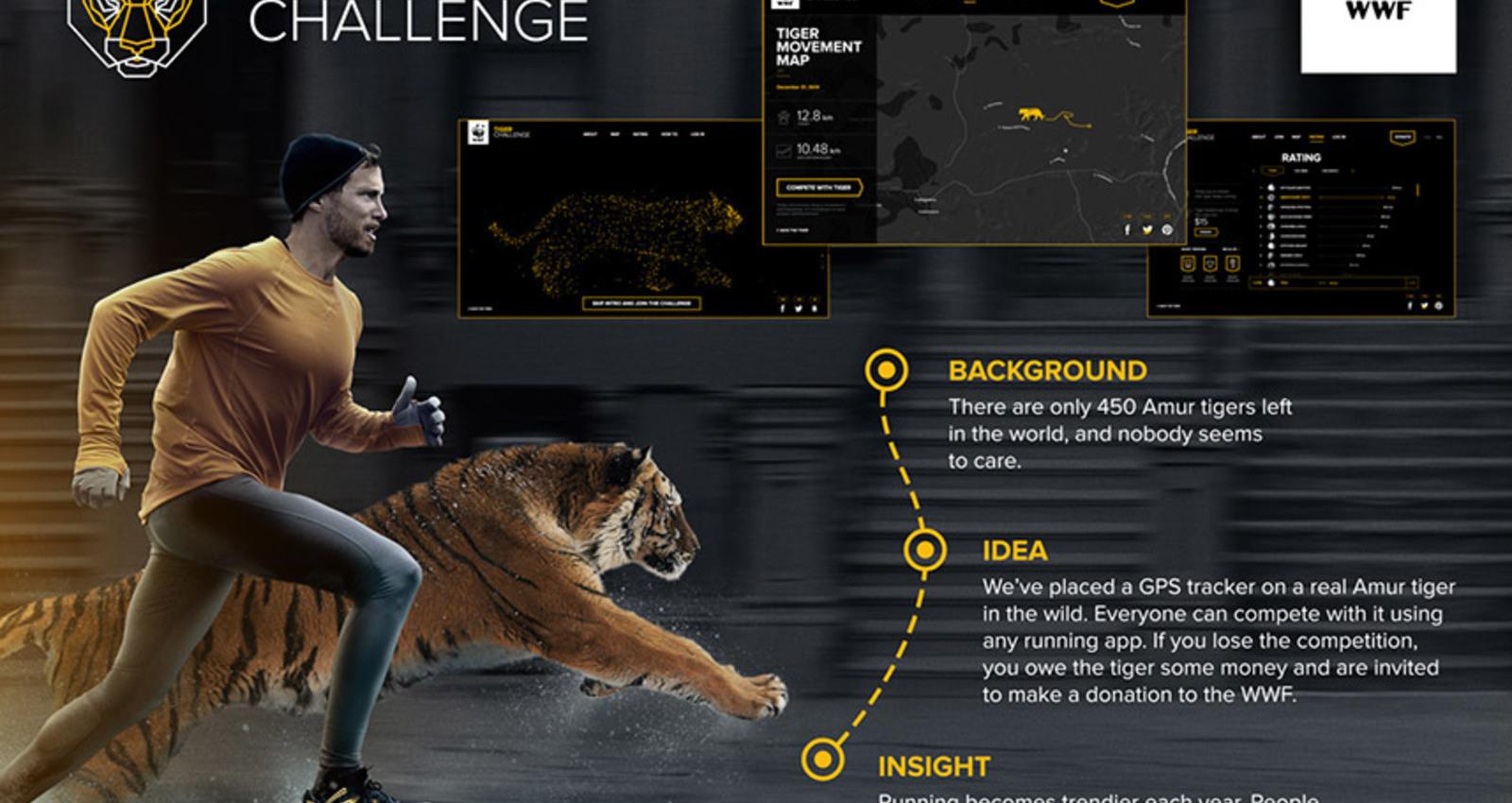 Tiger Challenge