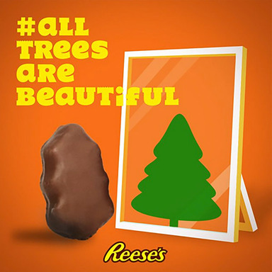 #AllTreesAreBeautiful