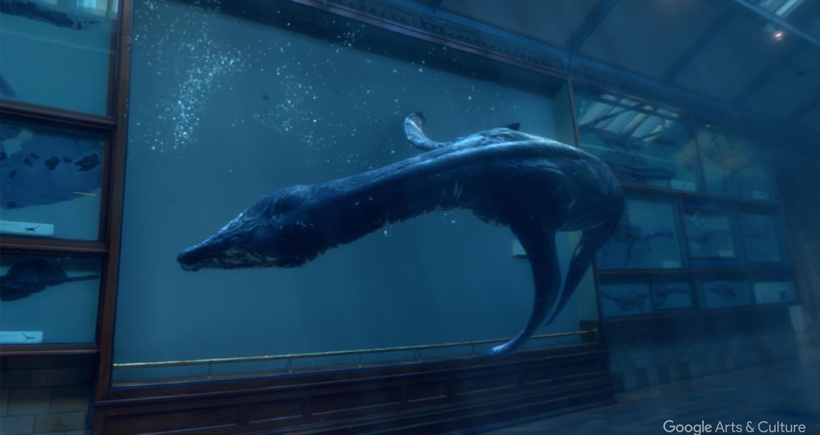 Back to Life in Virtual Reality: Rhomaleosaurus & Giraffatitan