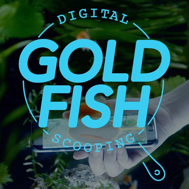 Digital Goldfish Scooping