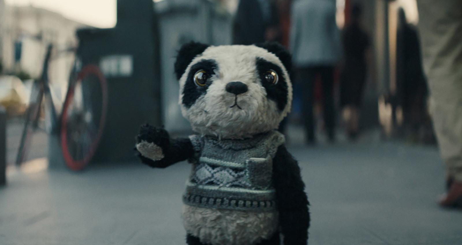 Lost Panda