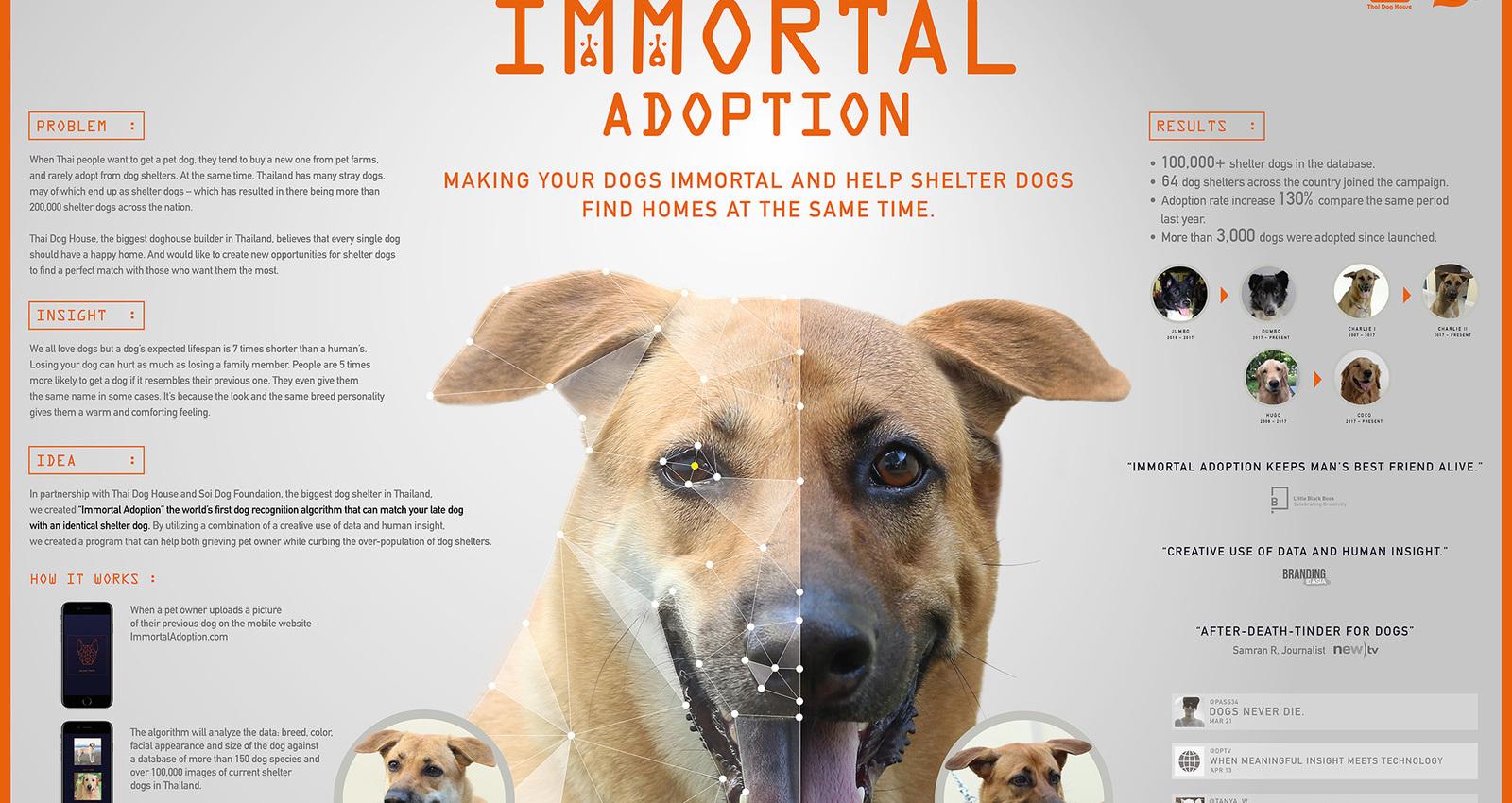 Immortal Adoption