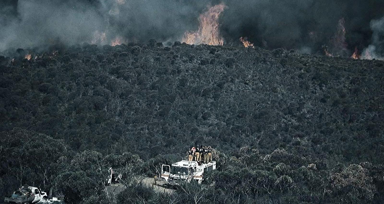 Bushfire Alert Ad