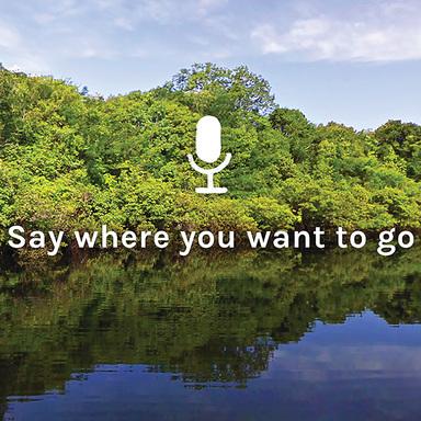 Speak to Go