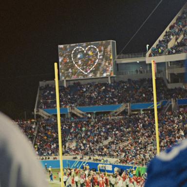 Fans of Love