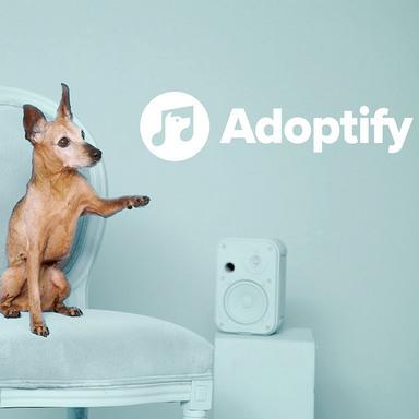 Adoptify