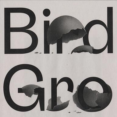 Bird Grotesk