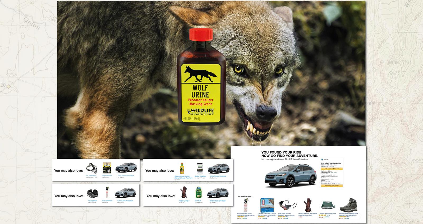 Subaru Amazon Infiltration