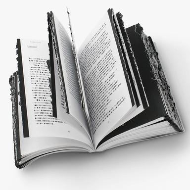Book Burnings: An Anthology