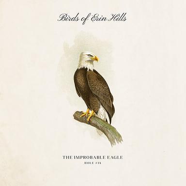 Birds Print Campaign