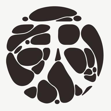 Tian Shui's Branding Design