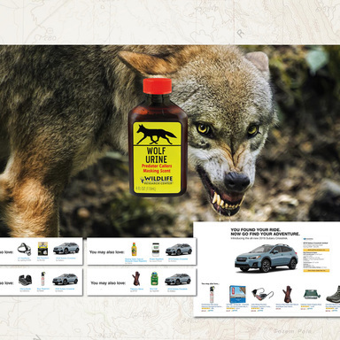 Subaru Amazon Infiltration