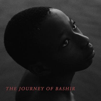 Dear Enemy - The Journey of Bashir