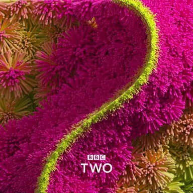 BBC 2 iDents