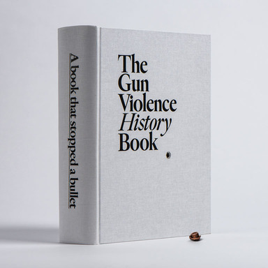 The Gun Violence History Book