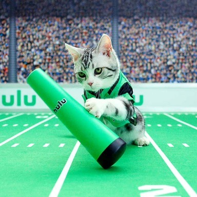 Hulu Sellouts x NFL