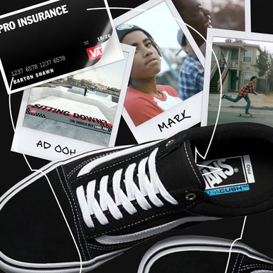Pro Insurance