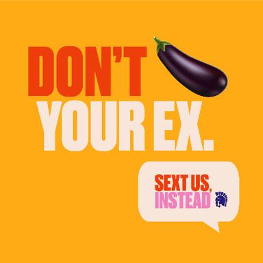 Sext Us, Instead