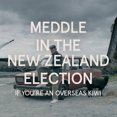 Meddle in the New Zealand Election