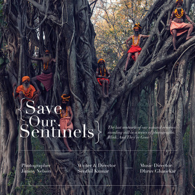 Save Our Sentinels