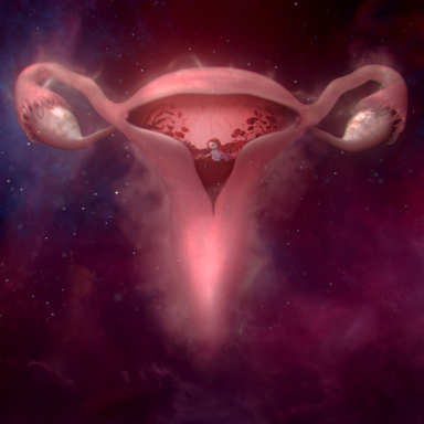 #wombstories