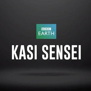 Kasi Sensei