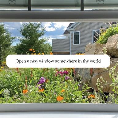www.window-swap.com