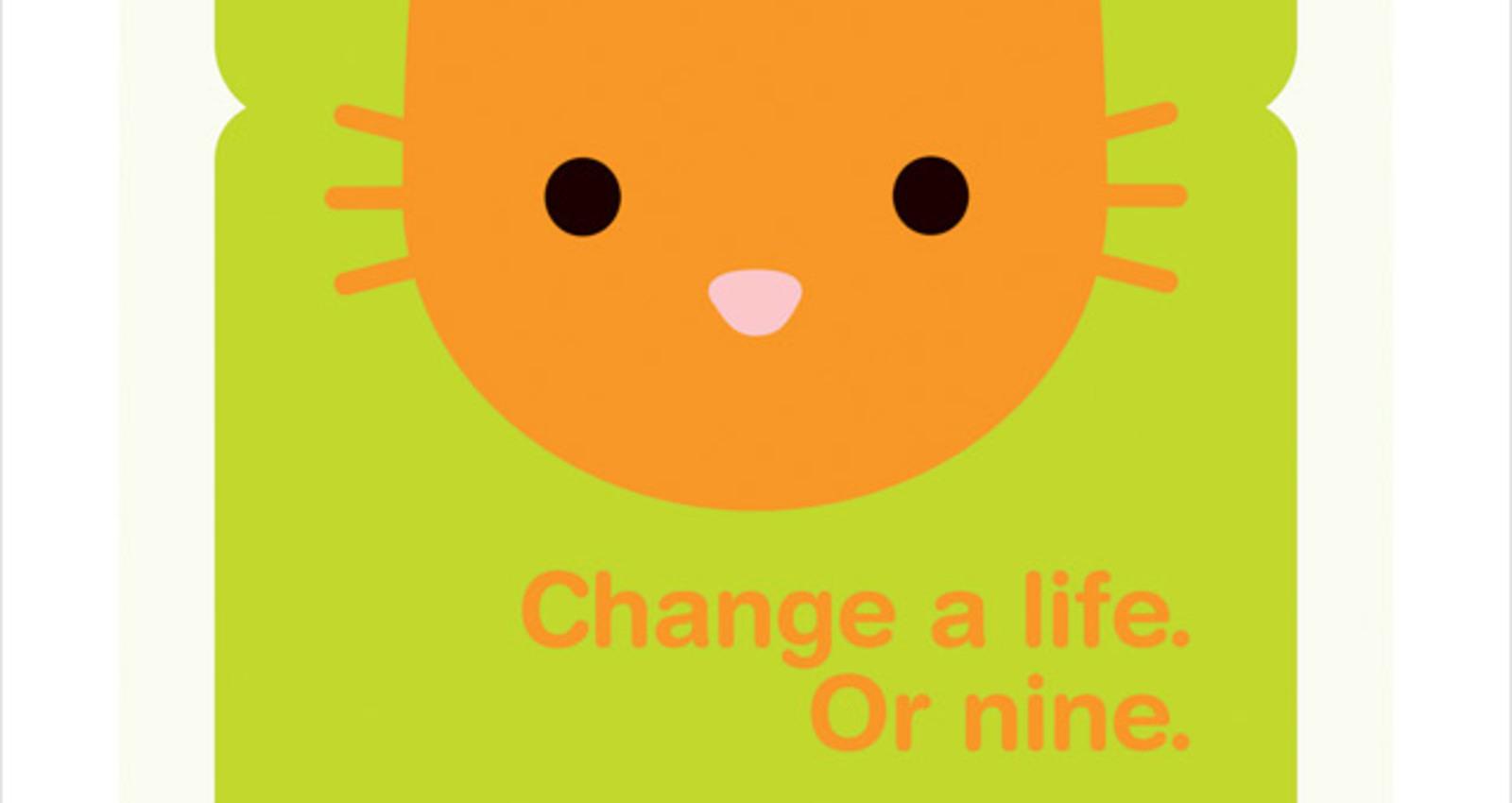 Adopt A New Life