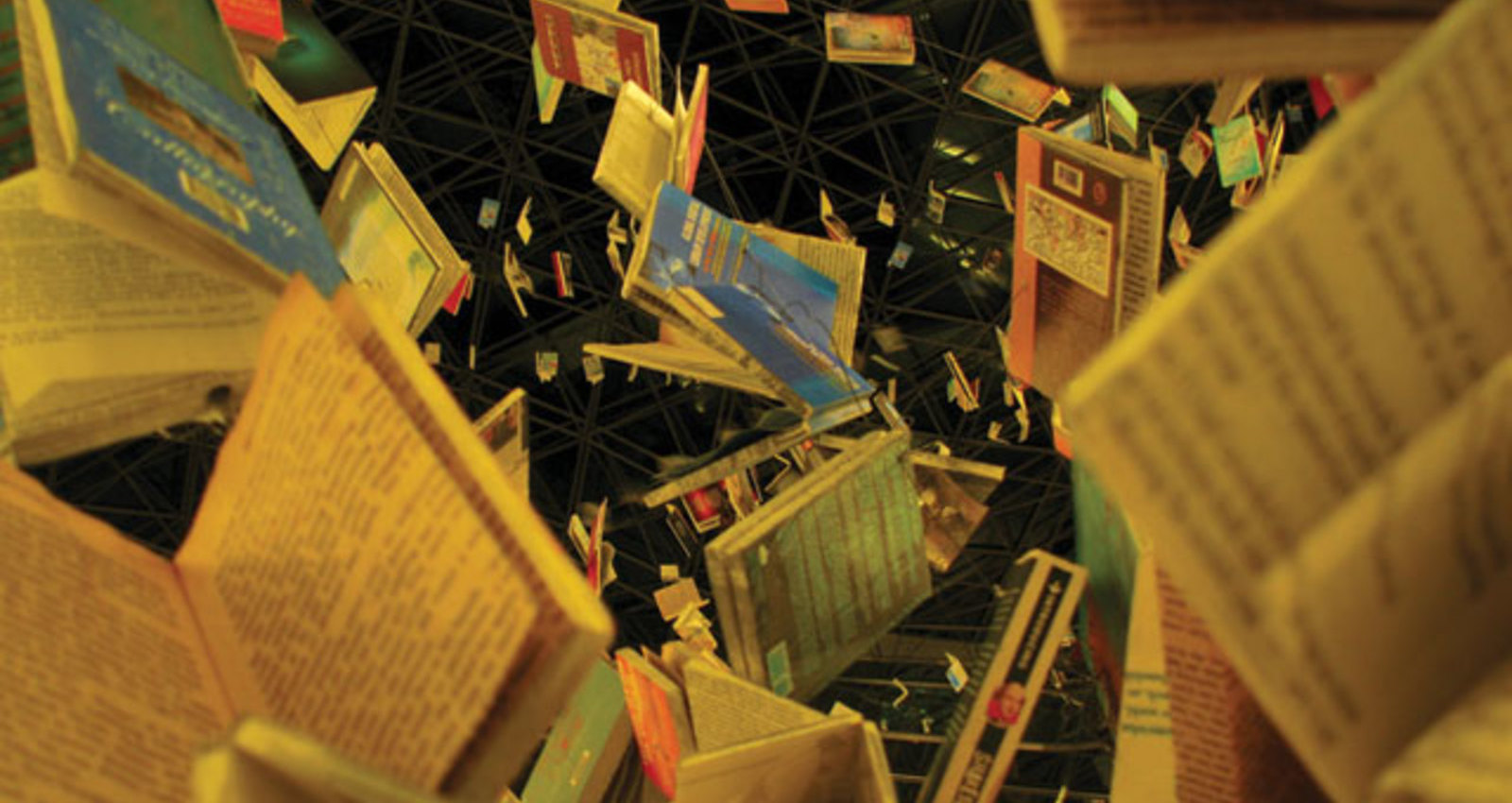 The Cascade of Books