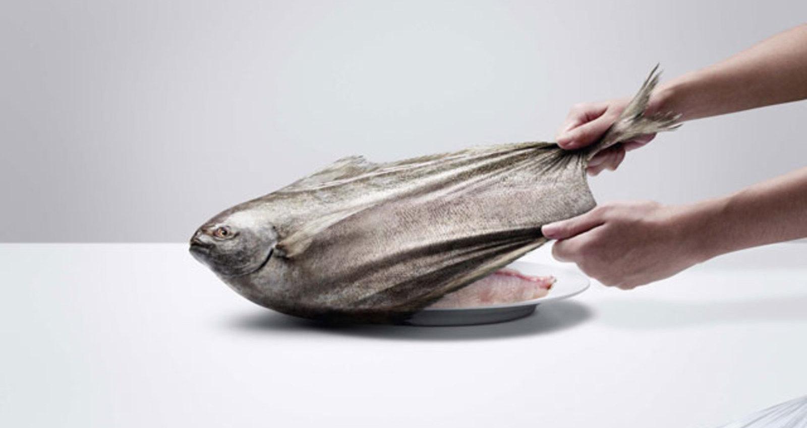 FISH/CHICKEN/PORK