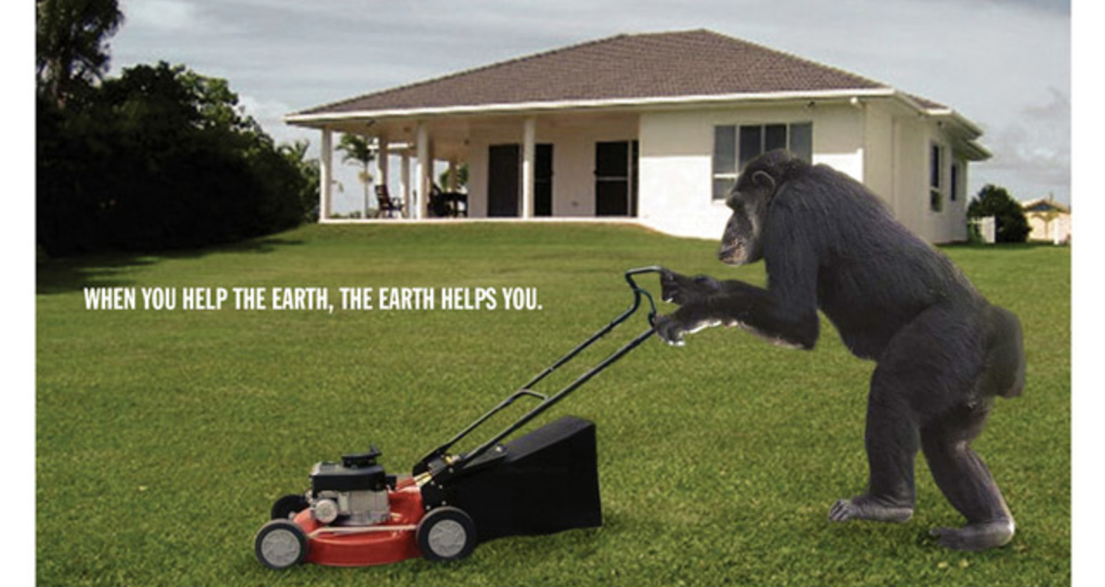 the earth helps you