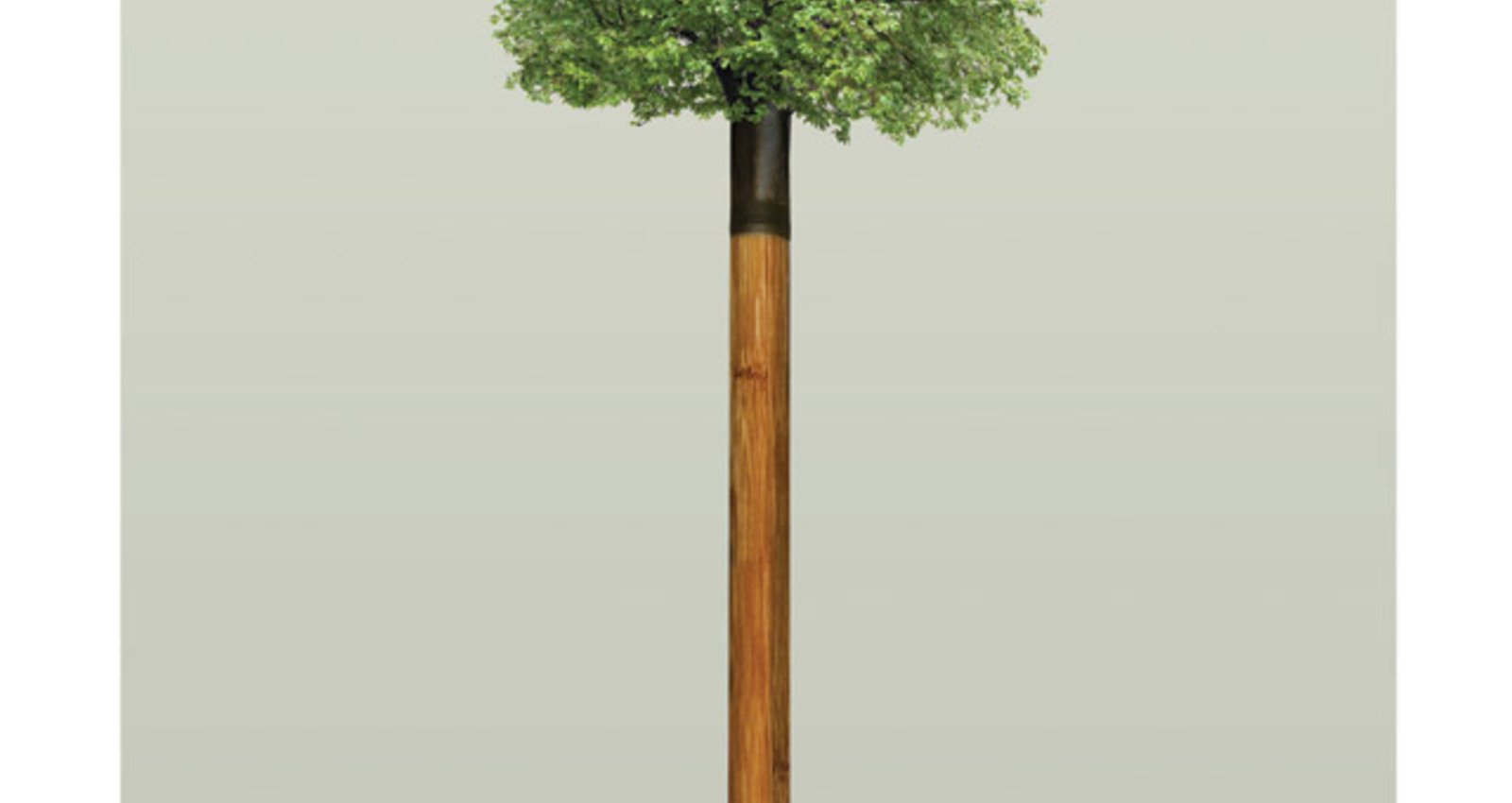 Tree Shovels
